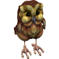 Owl_cls