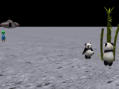 PANDAS ON THE MOON