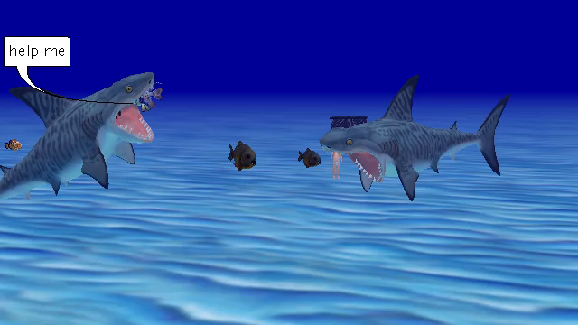sharks that dont know what there doing